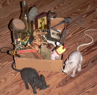 antique minded Pac-Rats